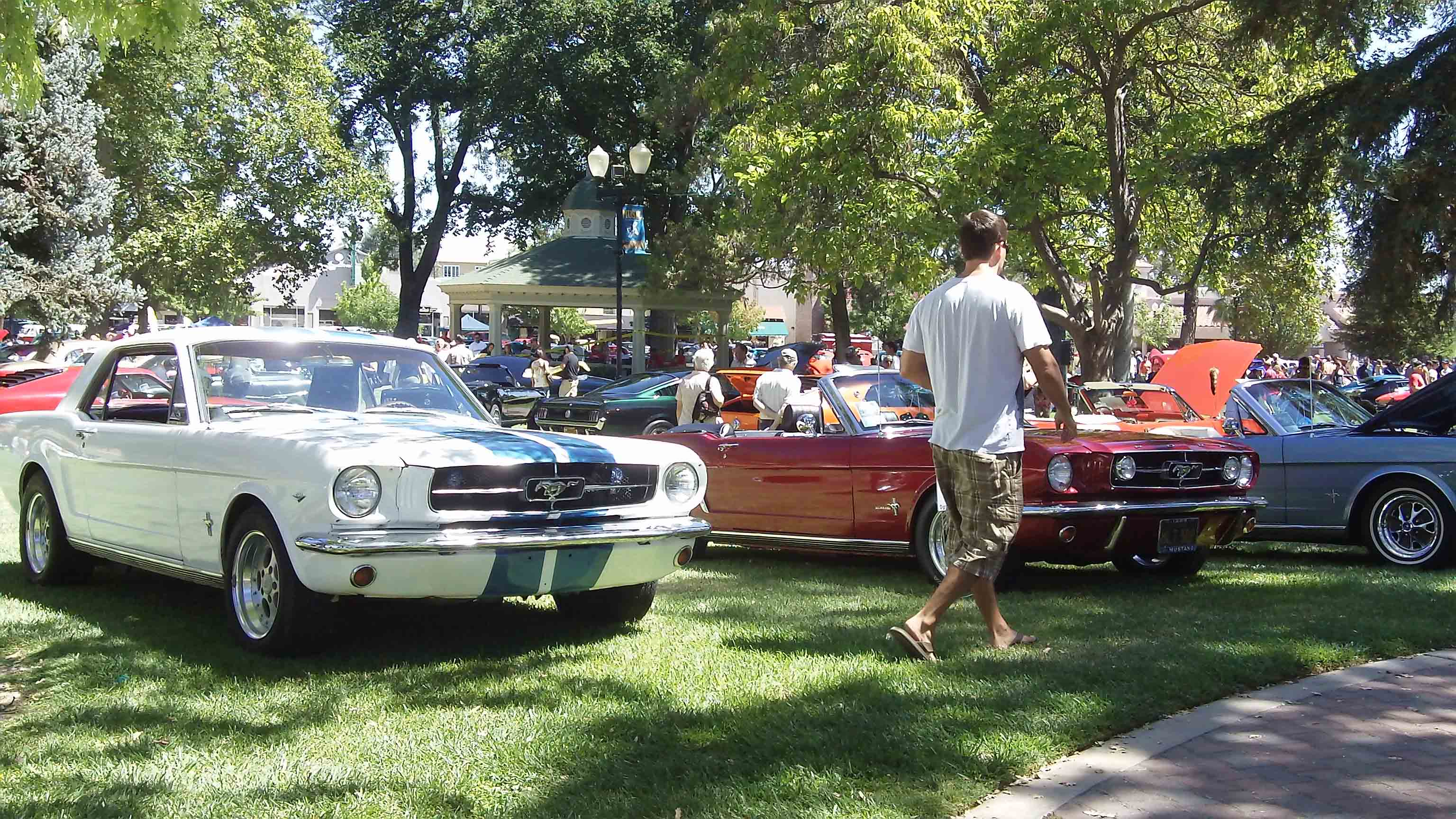 St Louis Area Car Shows For The Weekend Of July Th July Th - St louis car shows